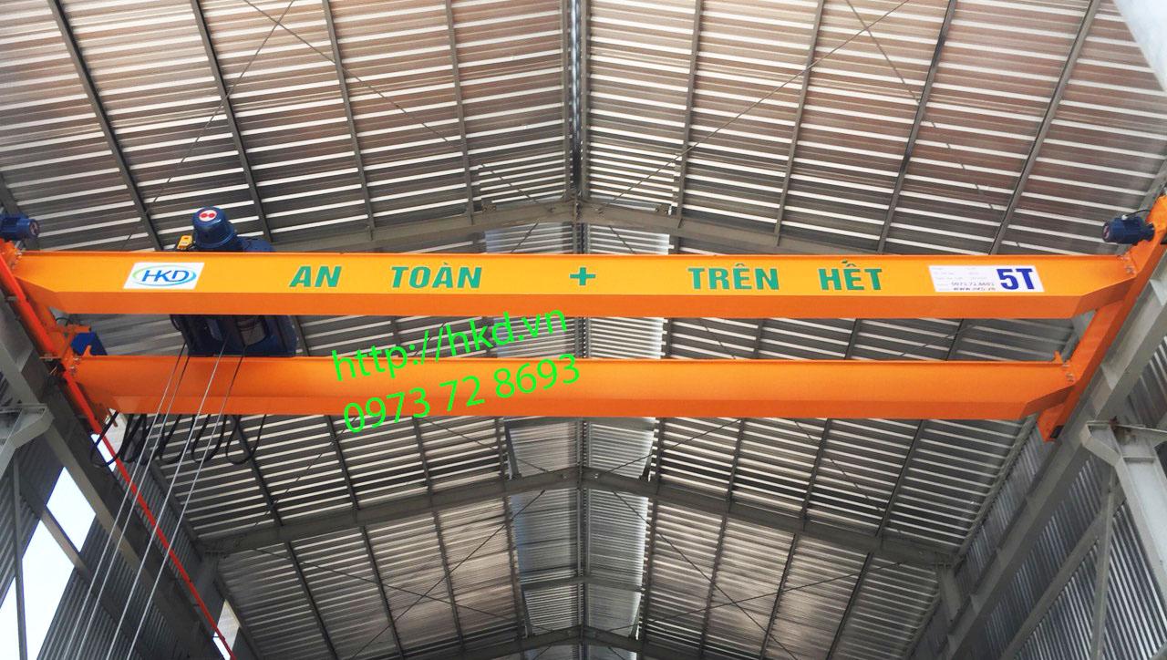Cầu trục dầm đôi 5 tấn tại HKD thiết kế