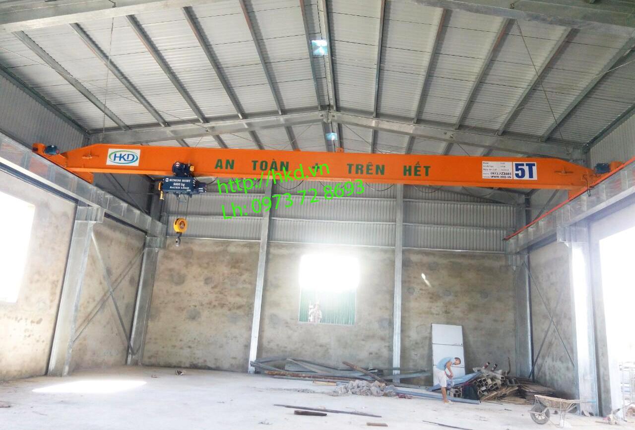 Cầu trục dầm đơn 5 tấn HKD cung cấp lắp đặt